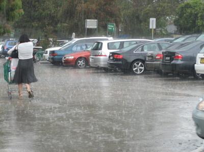 Rain1_1